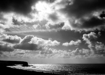 Landscape-3614